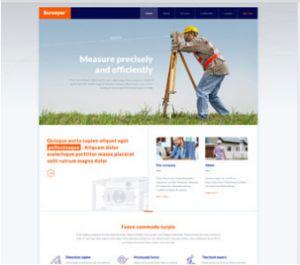 کد: surveyor